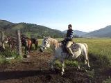 Первый день самостоятельно сижу на лошади
